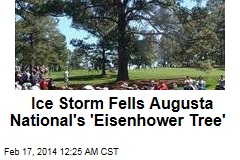 Ice Storm Victim: Golf's 'Eisenhower Tree'