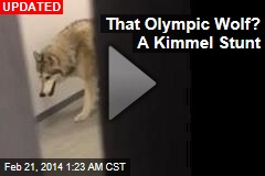 US Olympian Runs Into Wolf— in Sochi Dorm