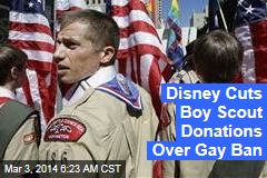 boy scout gay stories