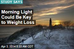 Morning Light Could Be Key to Weight Loss