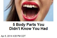 5 Body Parts You Didn't Know You Had