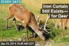 Iron Curtain Still Exists— for Deer