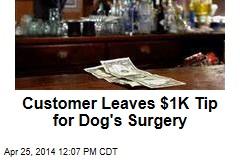 Customer Leaves $1K Tip for Dog's Surgery