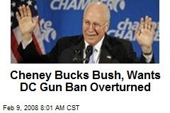 Cheney Bucks Bush, Wants DC Gun Ban Overturned
