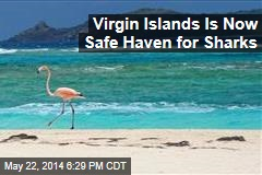 Virgin Islands Is Now Safe Haven for Sharks