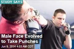 Male Face 'Evolved to Take Punches'