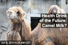 Health Drink of the Future: Camel Milk?