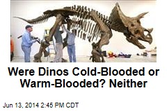Were Dinos Cold-Blooded or Warm-Blooded? Neither