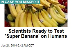 Scientists Ready to Test 'Super Banana' on Humans