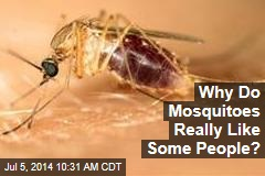 Why Do Mosquitoes Really Like Some People?