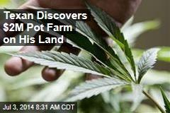 Texan Discovers $2M Pot Farm on His Land