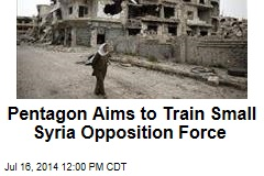 Pentagon Aims to Train Small Syria Opposition Force
