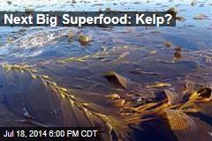 Next Big Superfood: Kelp?