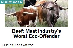 Beef: Meat Industry's Worst Eco-Offender