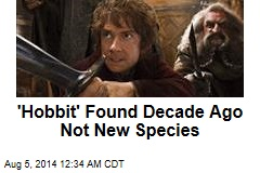 'Hobbit' Found Decade Ago Not New Species