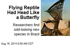 Flying Dinosaur Had Head Like a Butterfly