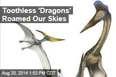 Toothless 'Dragons' Roamed Our Skies