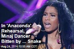 In 'Anaconda' Rehearsal, Minaj Dancer Bitten by ... Snake