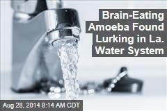 Brain-Eating Amoeba Found Lurking in La. Water System