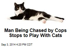 Man Being Chased by Cops Stops to Play With Cats