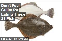 Don't Feel Guilty for Eating These 21 Fish