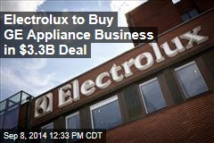 Electrolux to Buy GE Appliance Business in $3.3B Deal