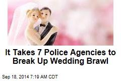 It Takes 7 Police Agencies to Break Up Wedding Brawl