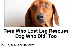 Teen Who Lost Leg Rescues Dog Who Did, Too
