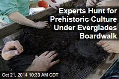 Experts Hunt for Prehistoric Culture Under Everglades Boardwalk