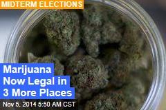 Ballot Measures: Oregon, DC Legalize Pot