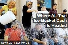 Where All That Ice-Bucket Cash Is Headed