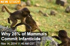 Why 25% of Mammals Commit Infanticide
