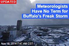 4 Deaths Blamed on Buffalo Snowstorm