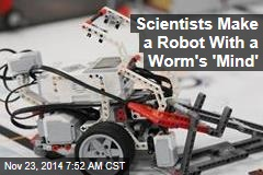 Scientists Make a Robot With a Worm's 'Mind'