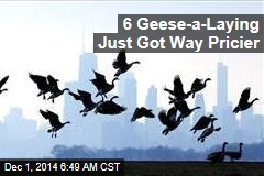 6 Geese-a-Laying Just Got Way Pricier