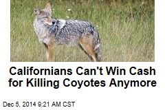 Californians Can't Win Cash for Killing Coyotes Anymore