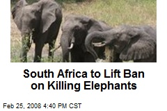South Africa to Lift Ban on Killing Elephants