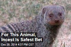For This Animal, Incest Is Safest Bet