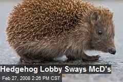 Hedgehog Lobby Sways McD's
