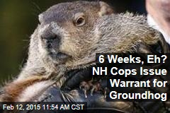 6 Weeks, Eh? NH Cops Issue Warrant for Groundhog