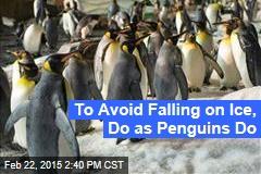 To Avoid Falling on Ice, Do as Penguins Do
