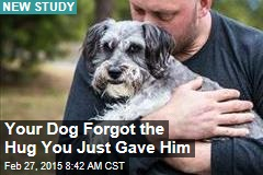 Your Dog Forgot the Hug You Just Gave Him