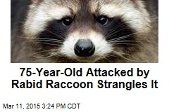 75-Year-Old Attacked by Rabid Raccoon Strangles It