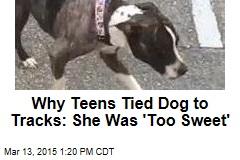 Why Teens Tied Dog to Tracks: She Was 'Too Sweet'