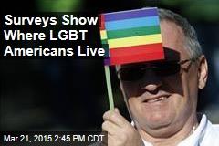 Surveys Show Where LGBT Americans Live