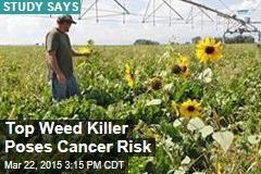Popular Weed Killer Poses Cancer Risk