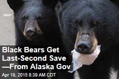 Black Bears Get Last-Second Save —From Alaska Gov