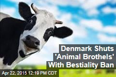 Denmark Shuts 'Animal Brothels' With Bestiality Ban