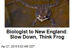 Biologist to New England: Slow Down, Think Frog