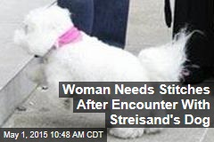 Woman Needs Stitches After Encounter With Streisand's Dog